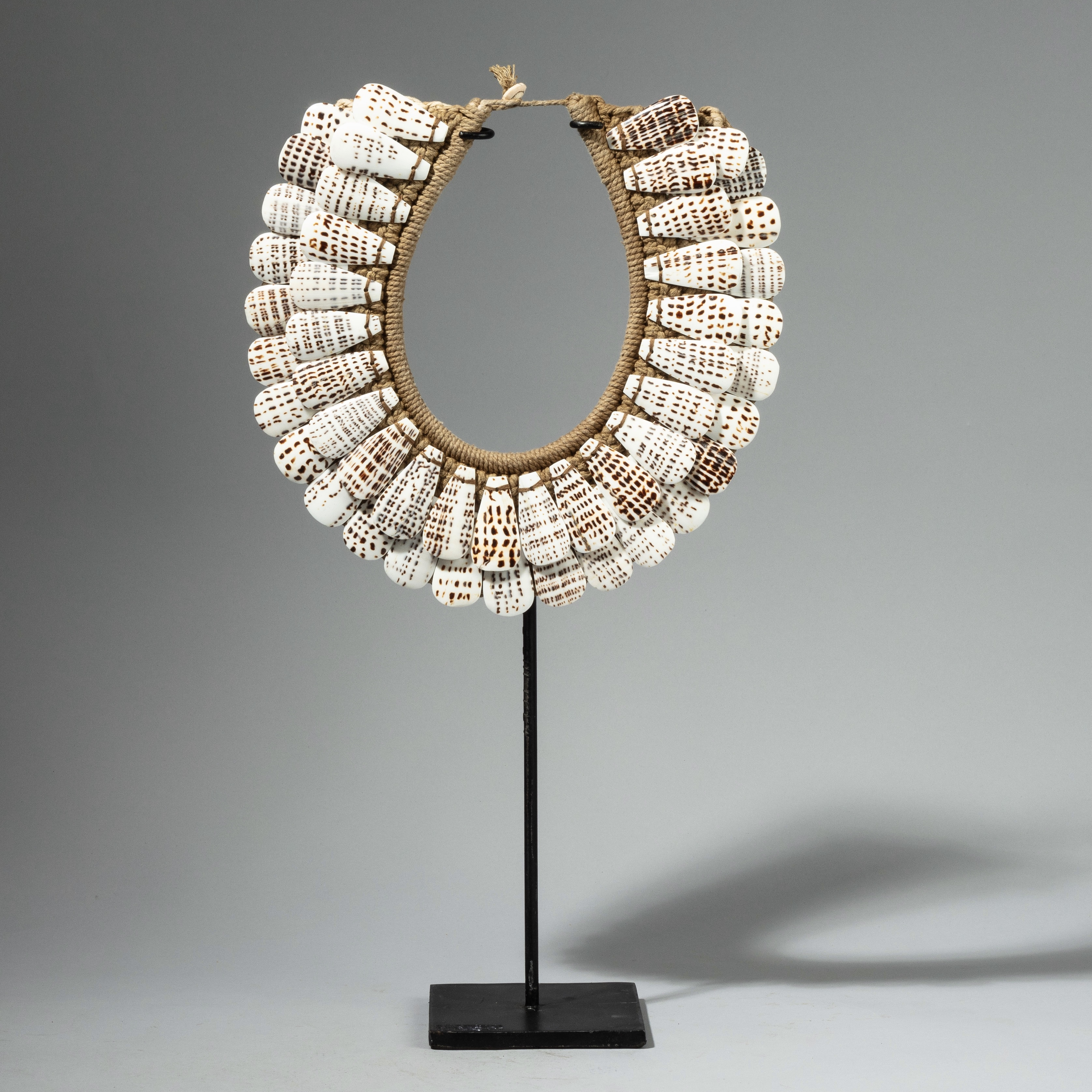 A SPECTACULAR SPOTTED SHELL COLLAR FROM PAPUA NEW GUINEA ( No 4261)