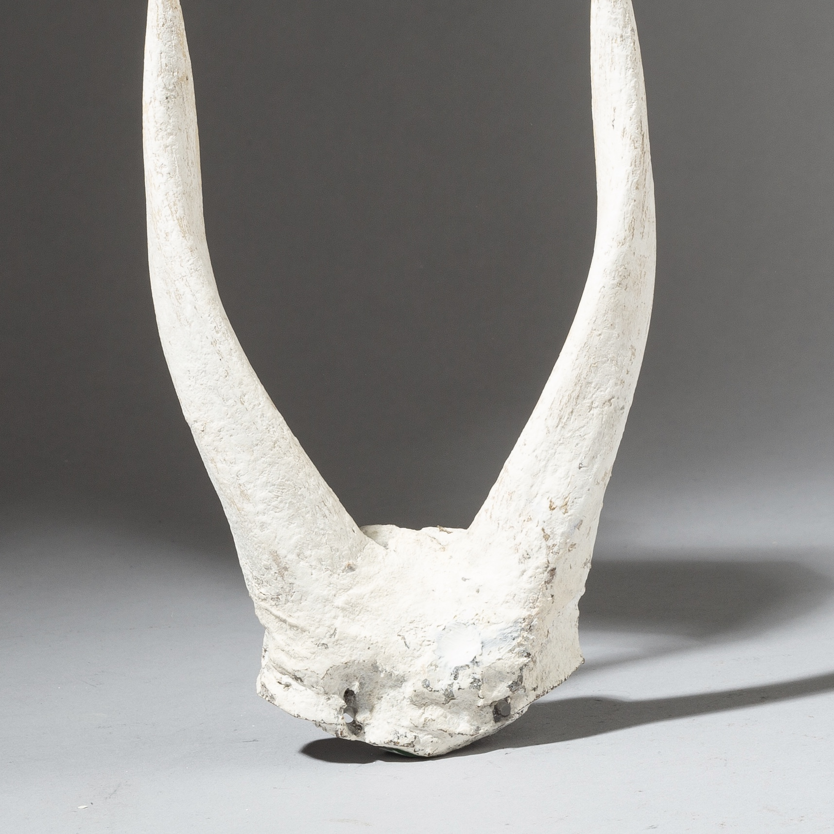 AN ANTELOPE HORN ALTAR OBJECT FROM THE ADAN TRIBE OF GHANA ( No 2742 )