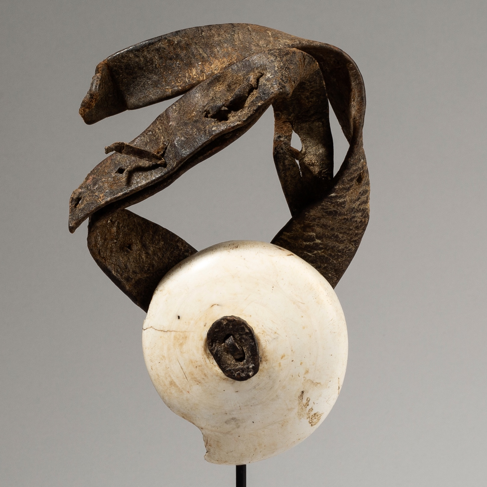 A EXTRA LARGE CURRENCY SHELL ON A LEATHER BELT, HIMBA TRIBE NAMIBIA  ( No 3814 )