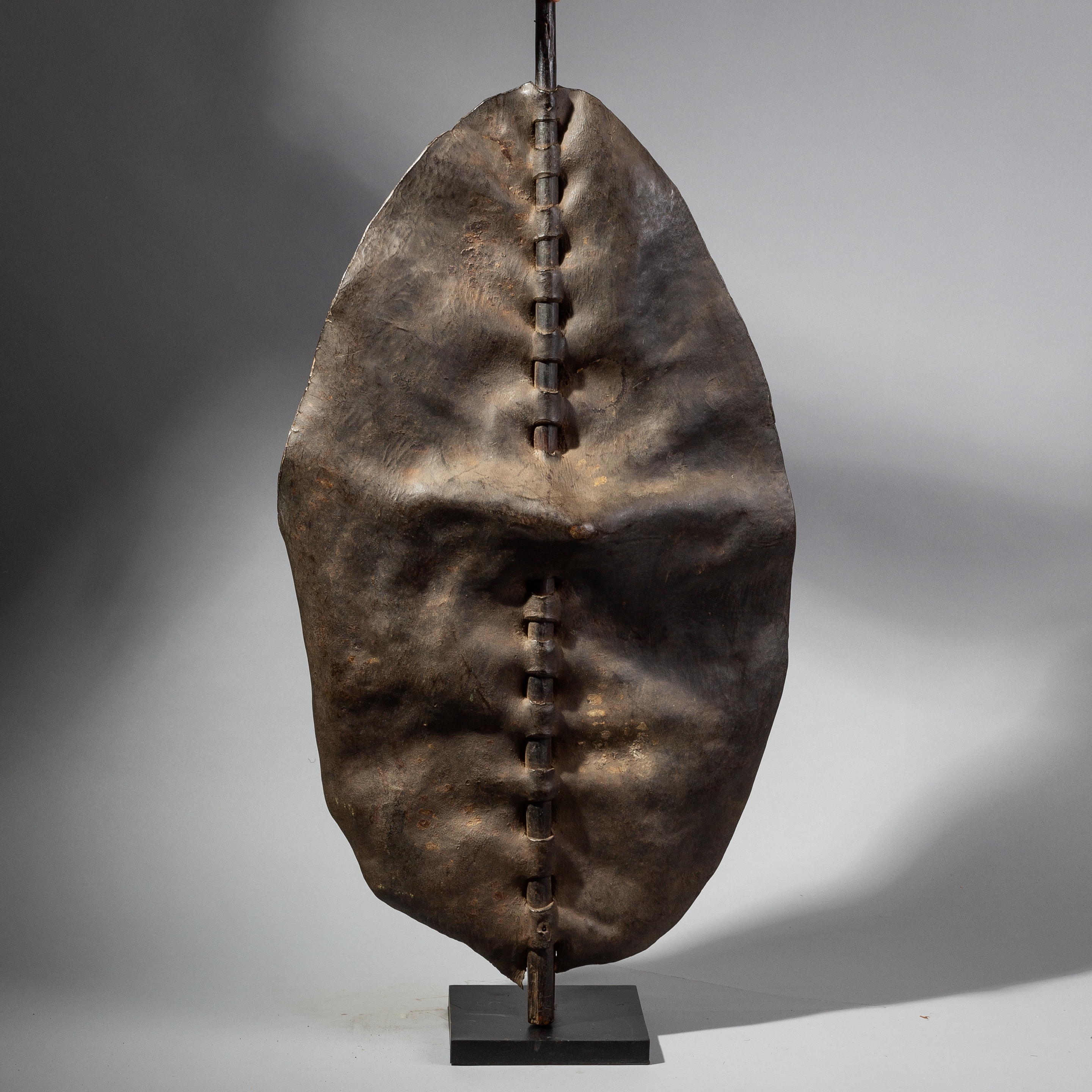 A LARGE +SCULPTURAL DINKA SHIELD FROM SUDAN ( No 1765 )