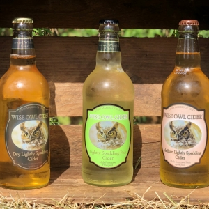 WISE OWL CIDER LTD