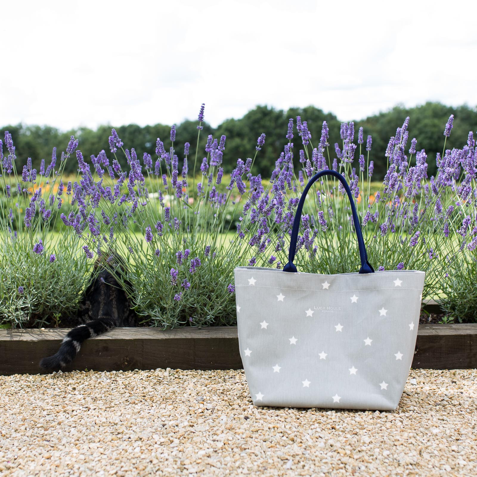 NEW Grey & White Star Medium Tote Bag with Navy Handles
