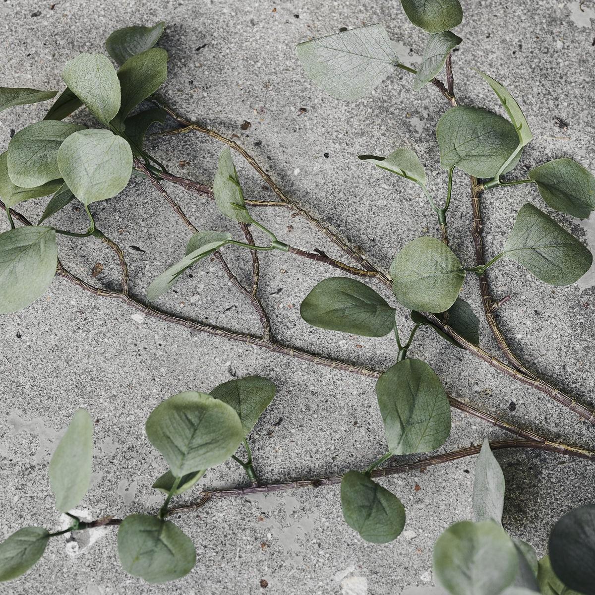 Eucalyptus gren, kunstig