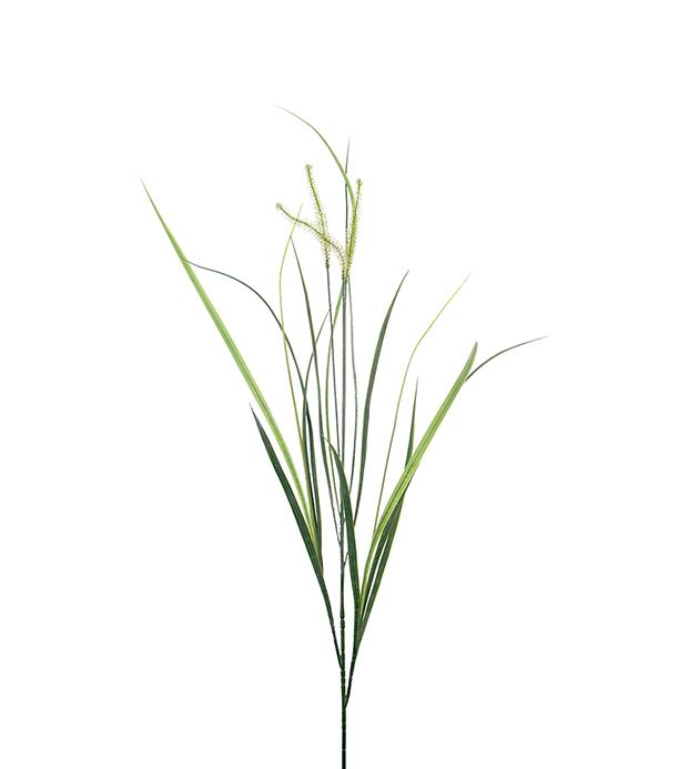 Gress, 95 cm