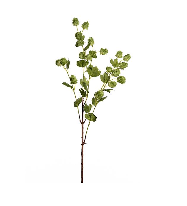Humle-kvist 90 cm