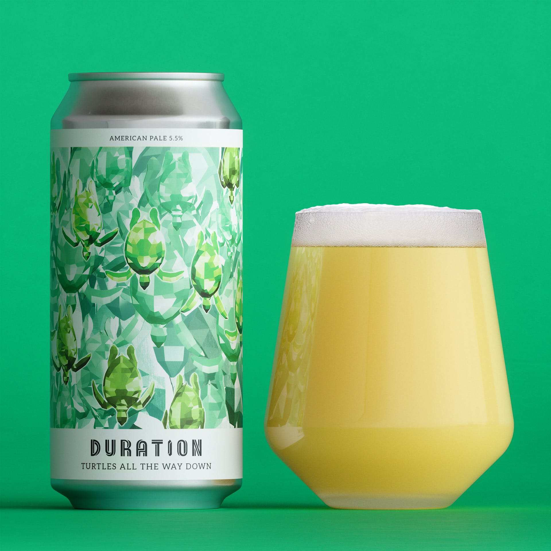 Turtles All The Way Down American Pale 5.5%  440ml Duration Brewing