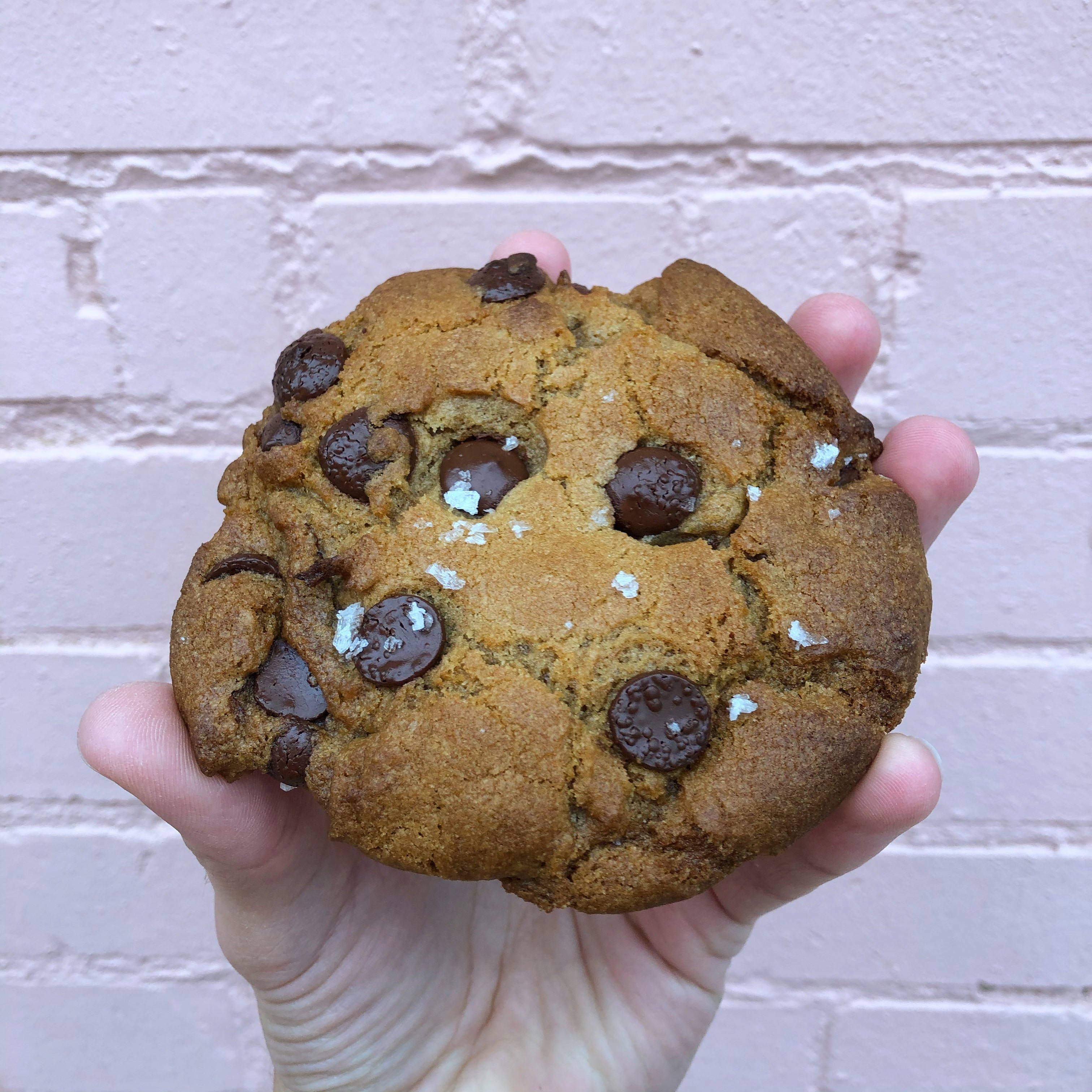 Chocolate Sea Salt Cookie