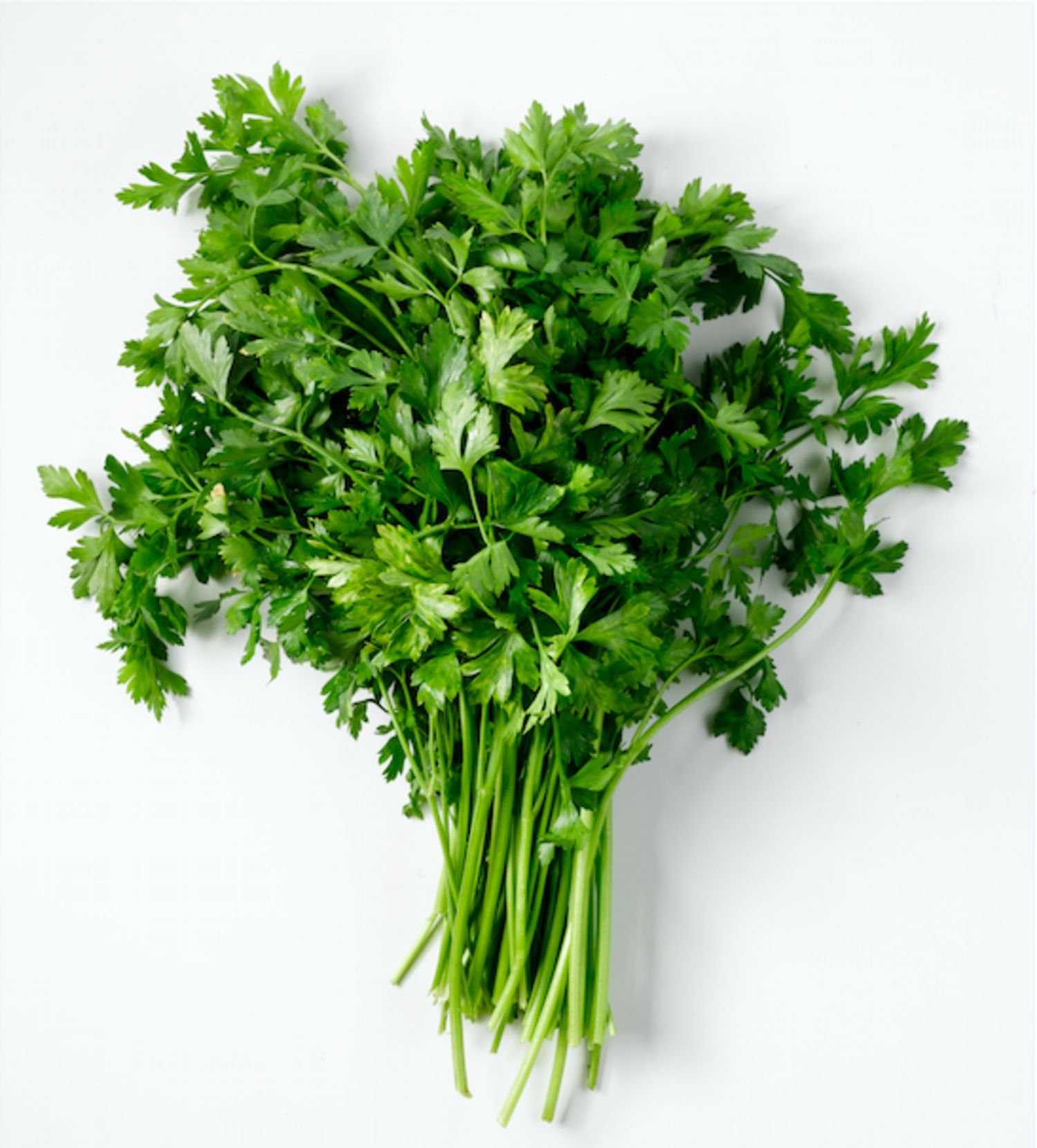 Parsley (Large Bunch)