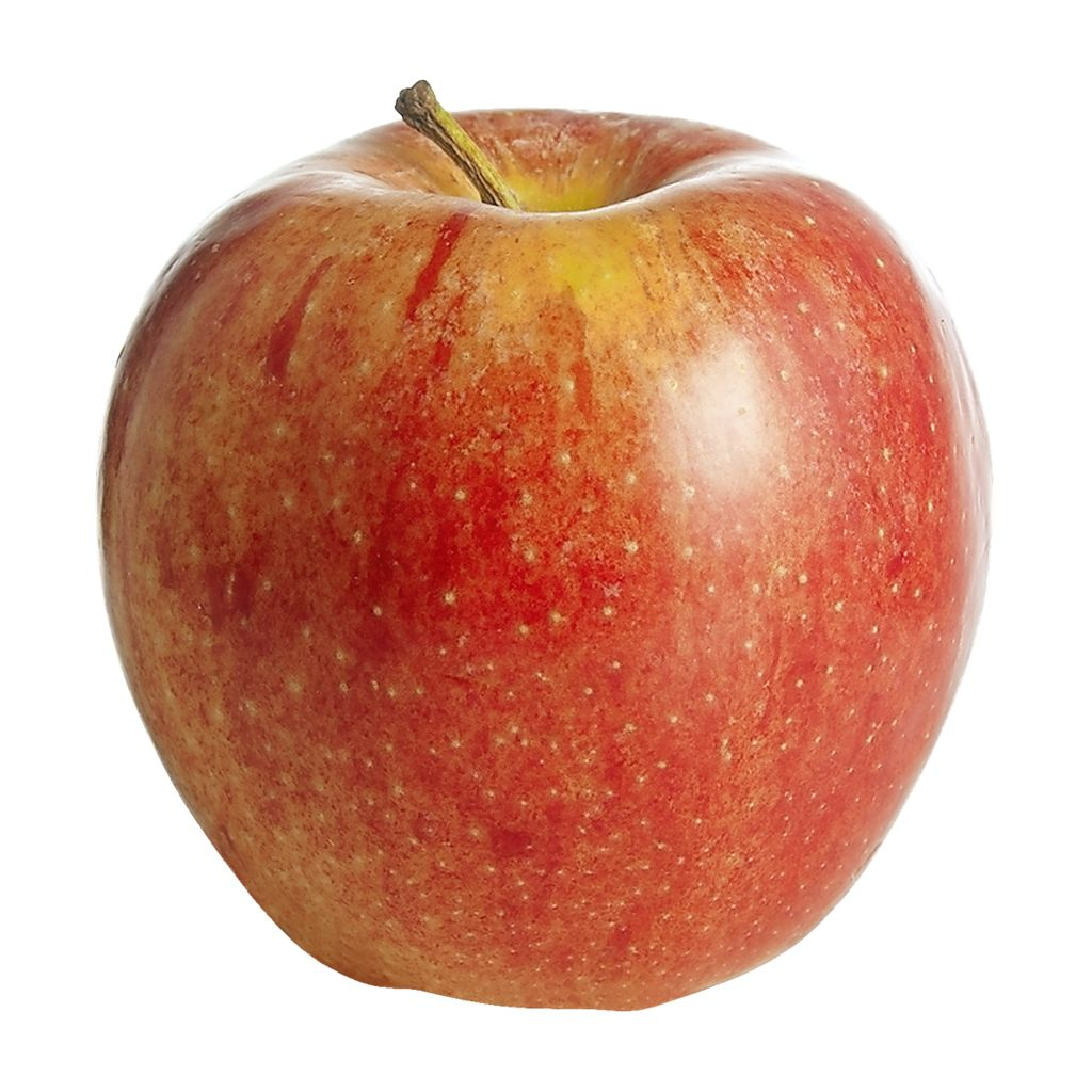 Gala Apples (ea)