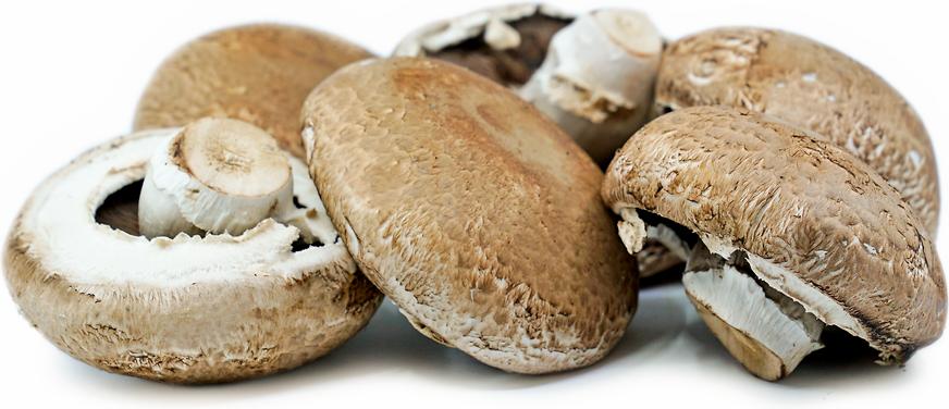 Portobello Mushroom (250g)