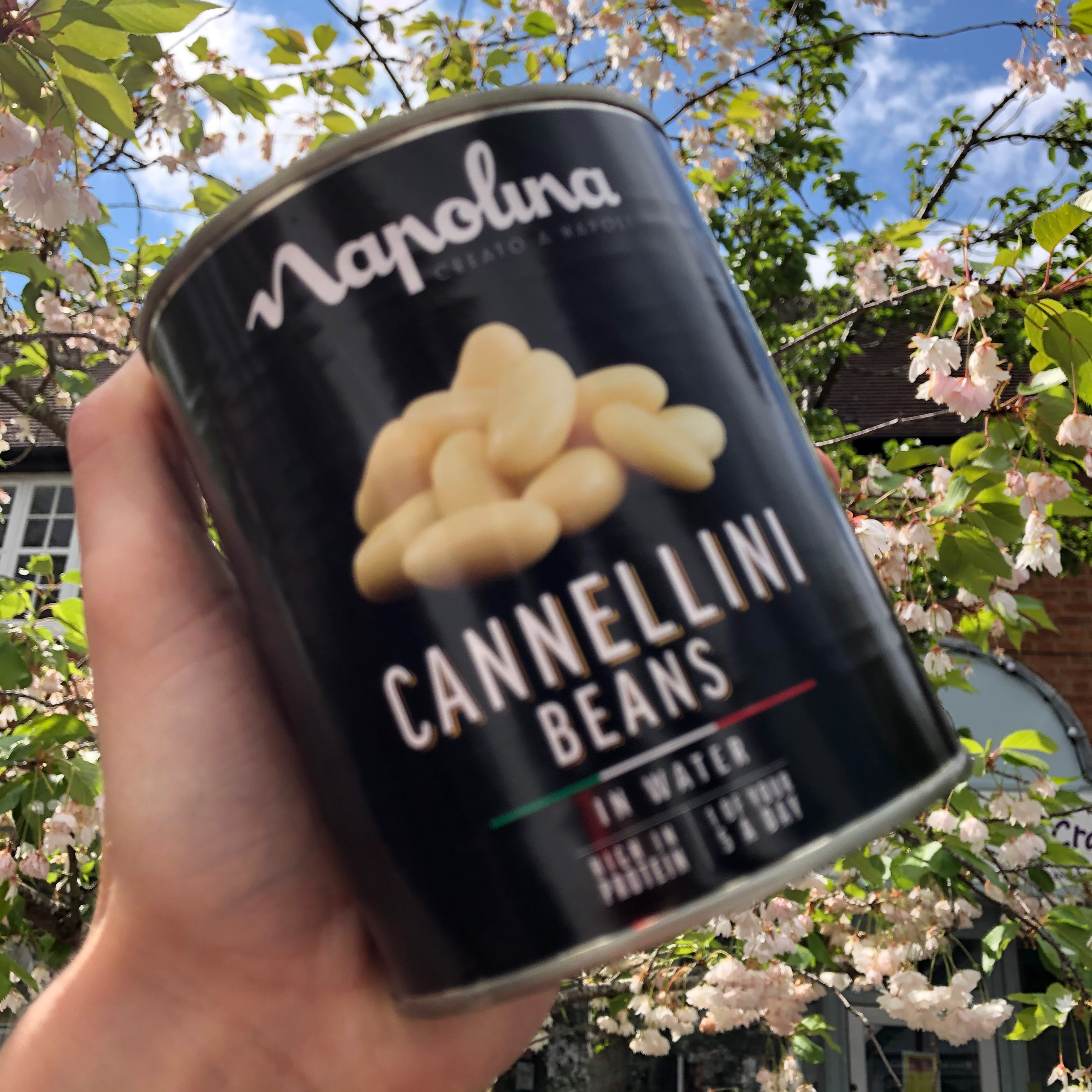Napolina Cannellini Beans (800g)