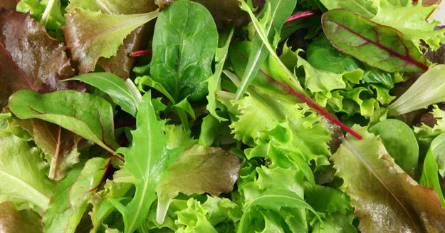Mixed Leaf Salad (125g)