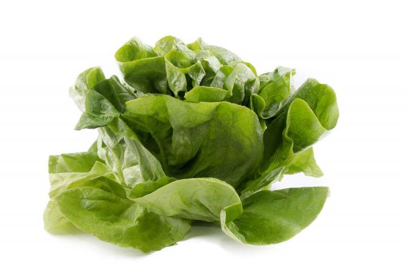 Round Lettuce (ea)