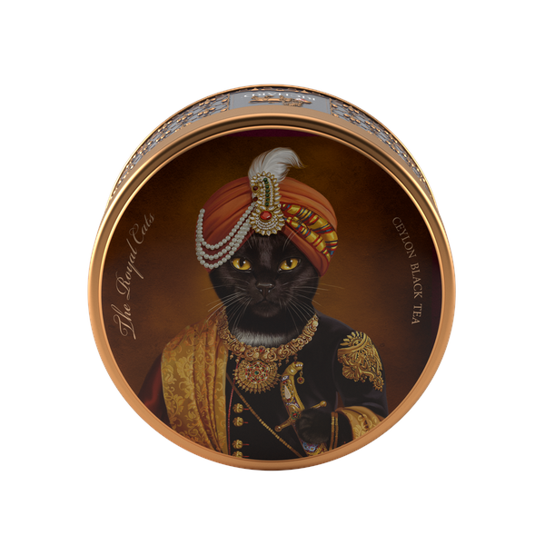 The Royal Dogs & Cats, BOMBAY