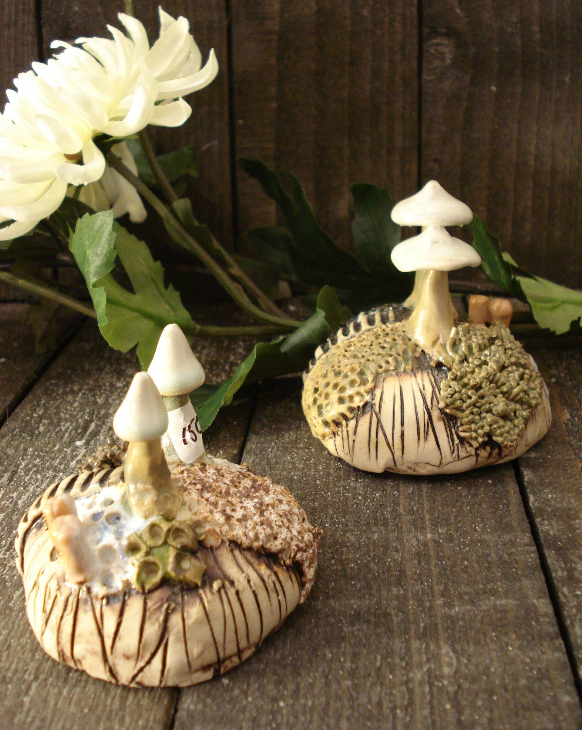 Små svampe landskaber