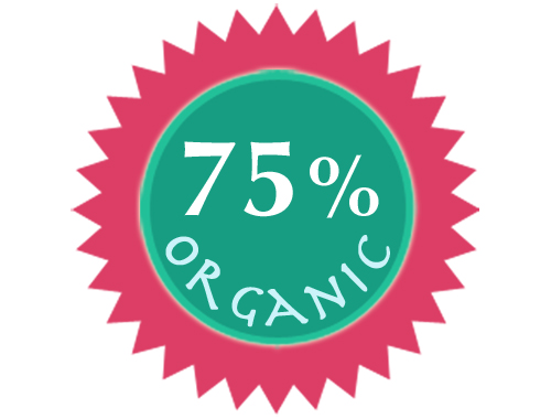Organic Mighty Mint Lipbalm - SALE