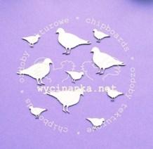 W01357 Fugle