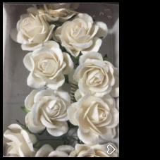 ICROSE01 Roser Hvide