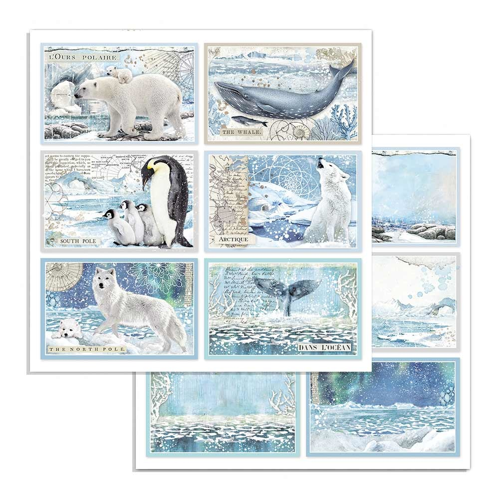 Stamperia Arctic Antarctic Cards 1 ARK (SBB732)