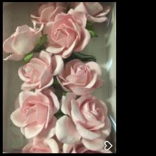 ICROSE02 Roser Rosa