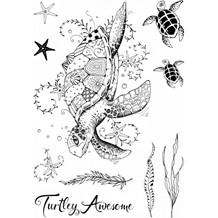 CE PI019 Sea turtle