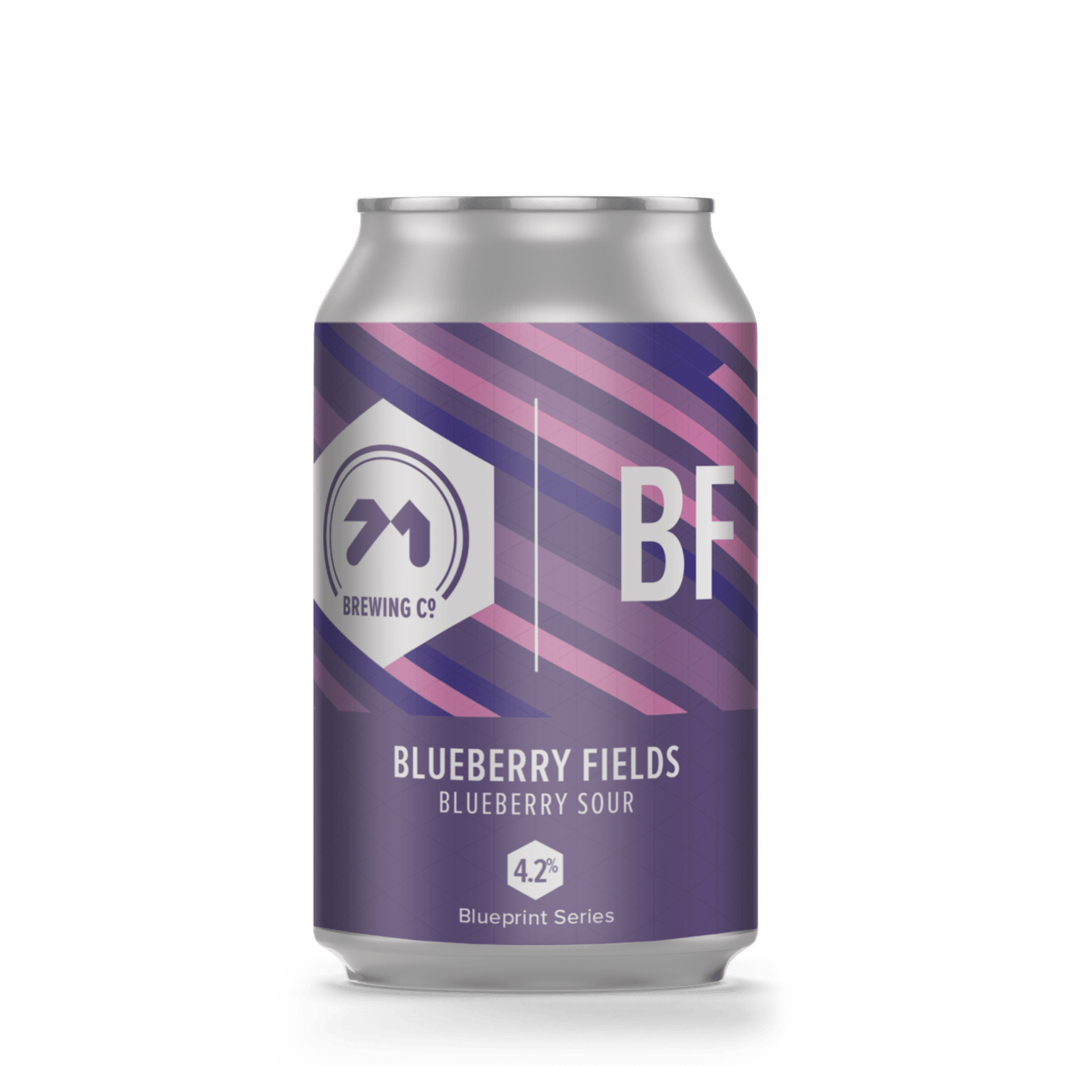 71 Brewing: Blueberry Fields