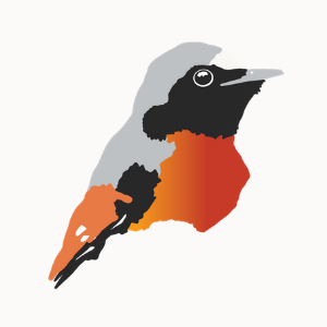 REDSTART LAW - UK Immigration