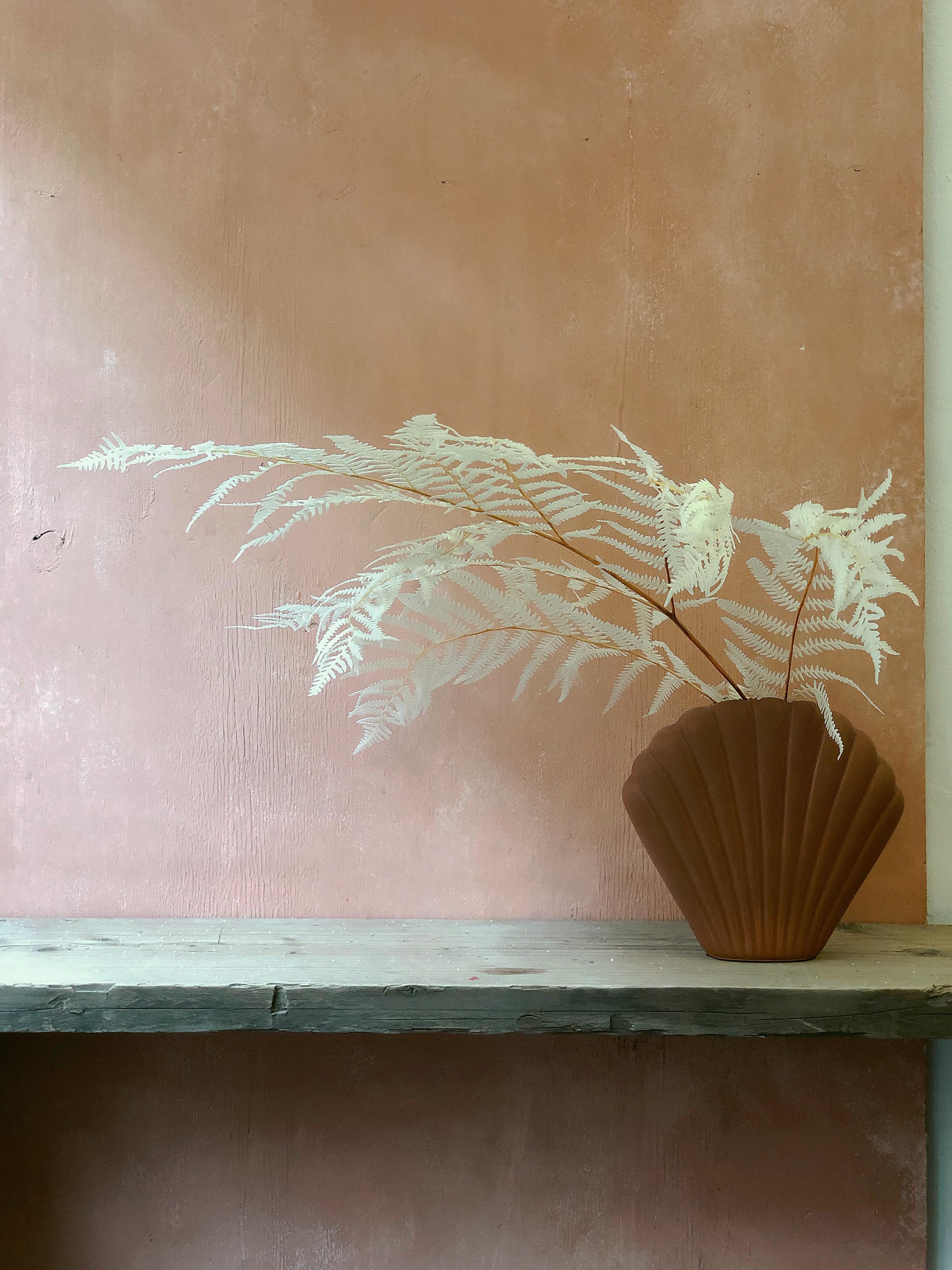 Bleached fern