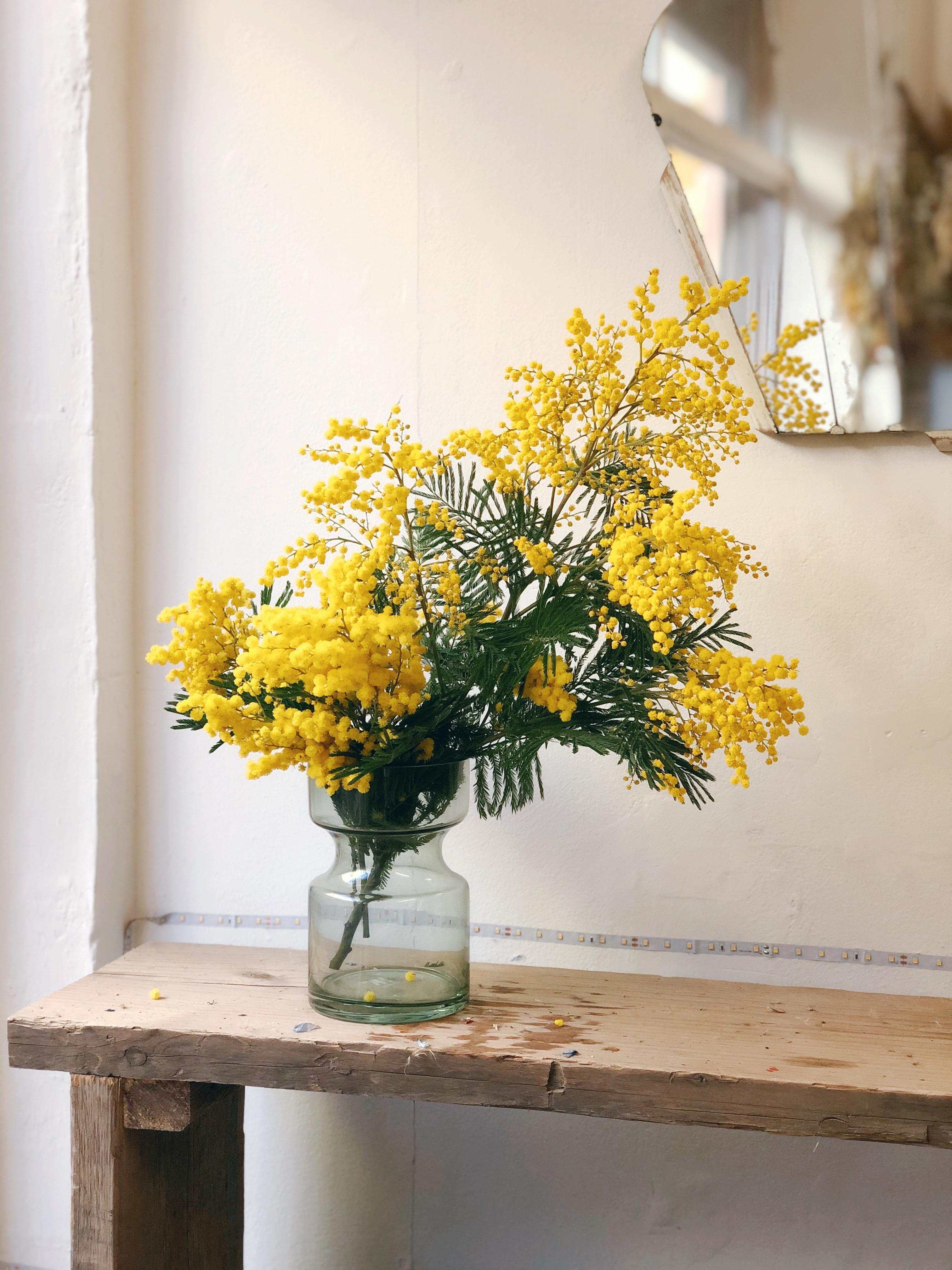 Seasonal fresh flower bunch: Mimosa
