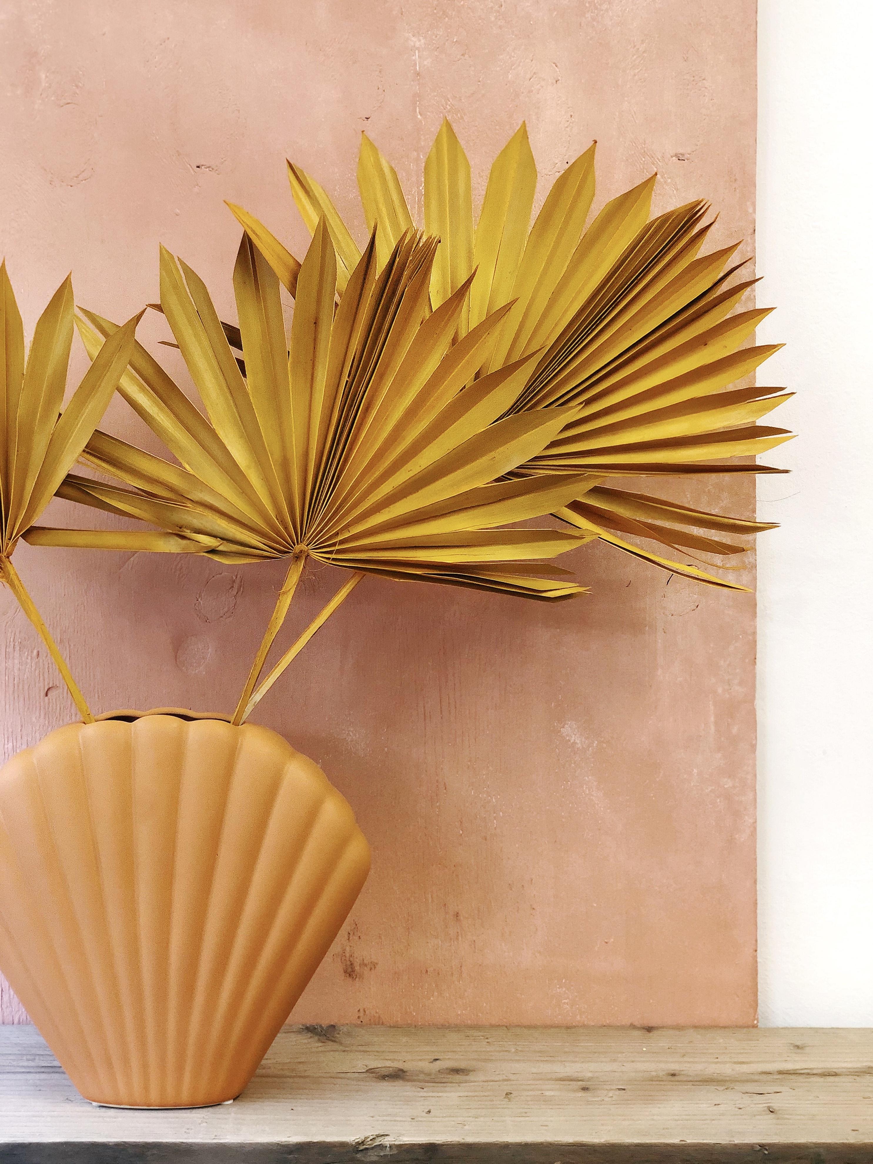 Sun palm - ochre