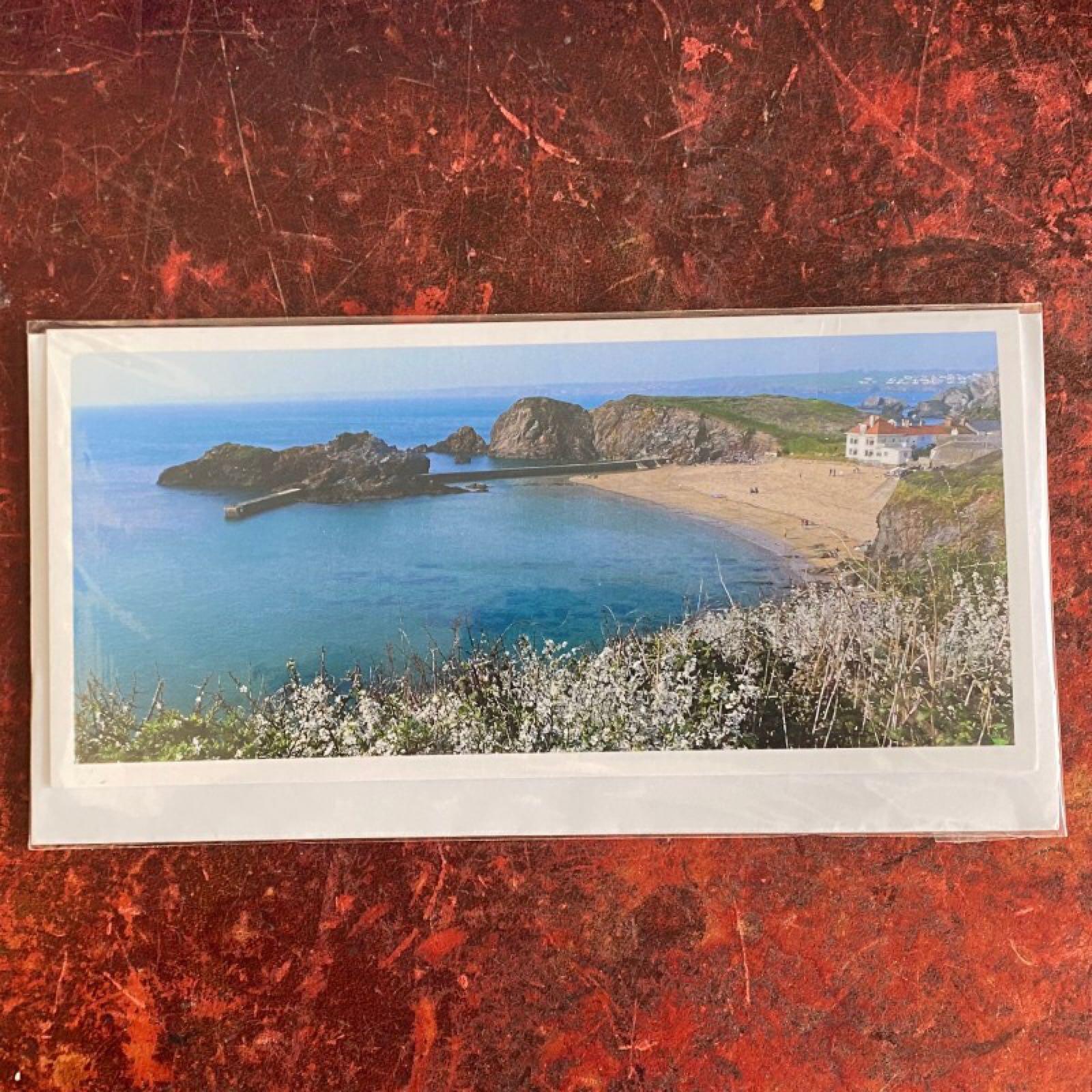 'Hope Cove' Blue Morpho Card