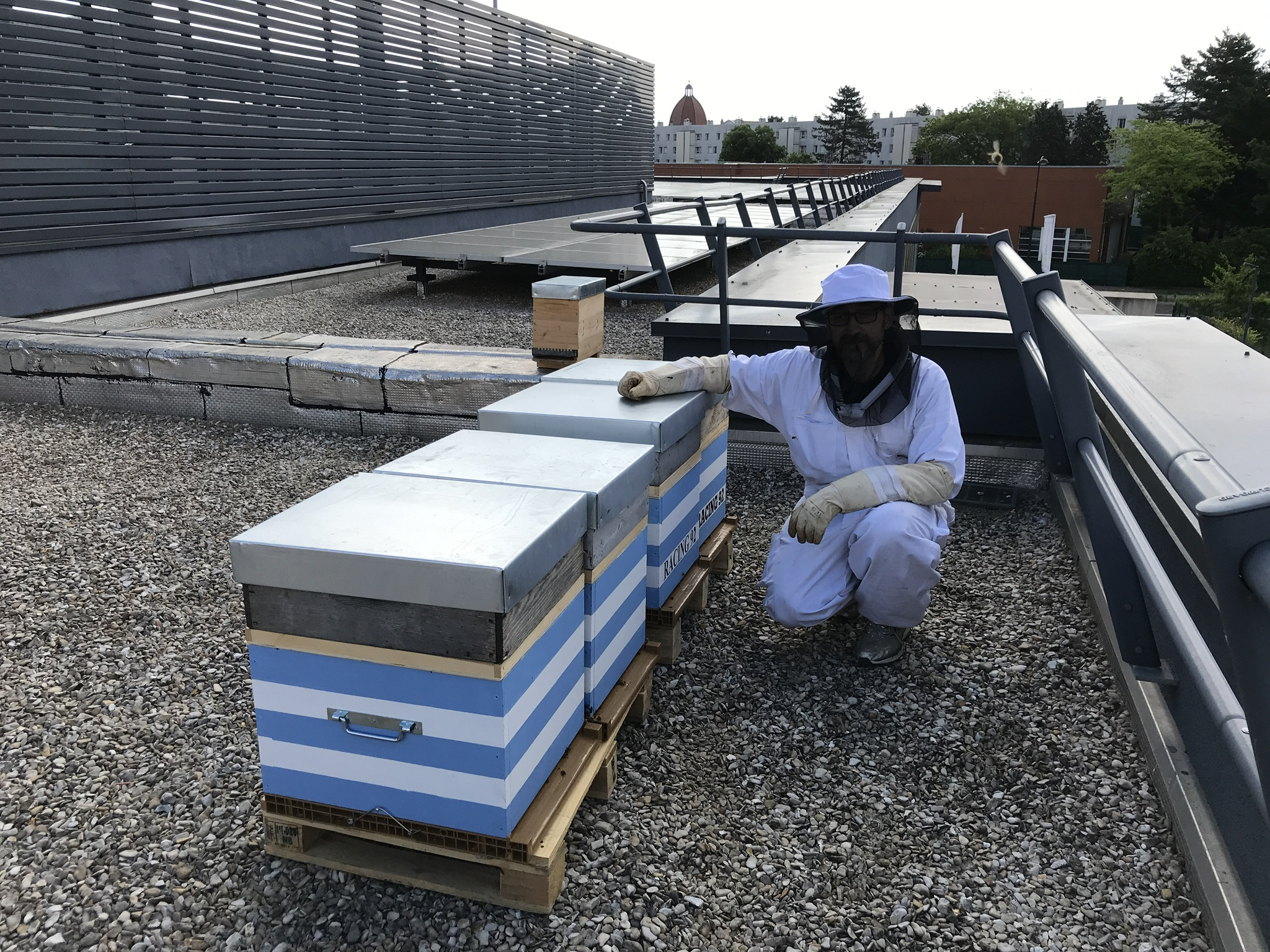 Ruch'Bee apiculture