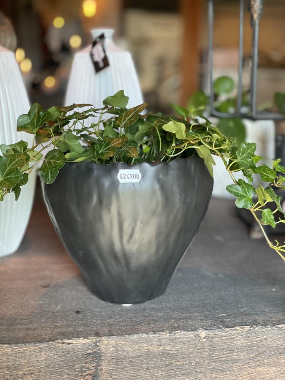 Kruka svart keramik