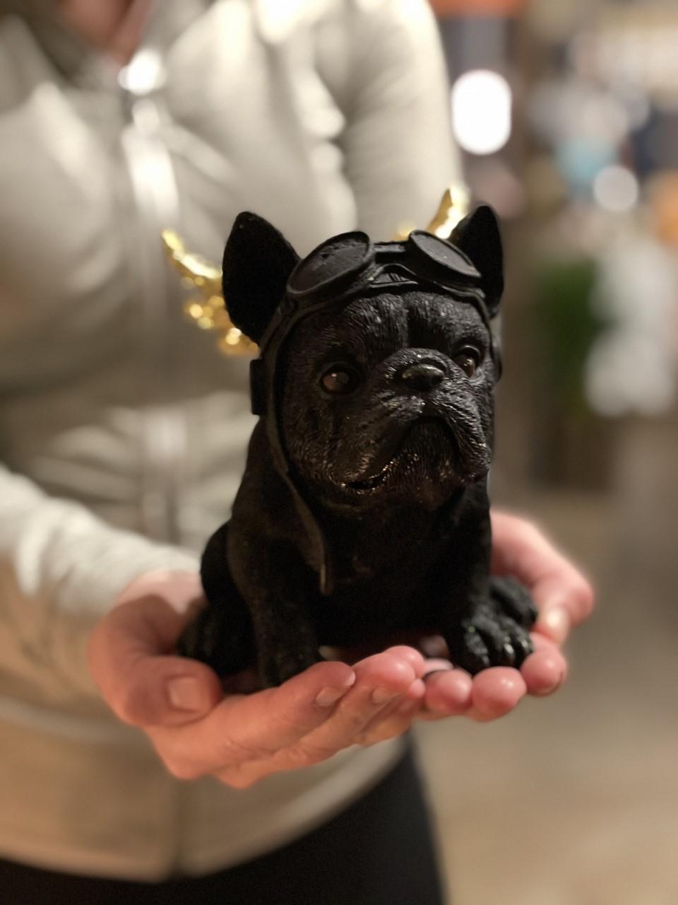Bulldog svart/guld