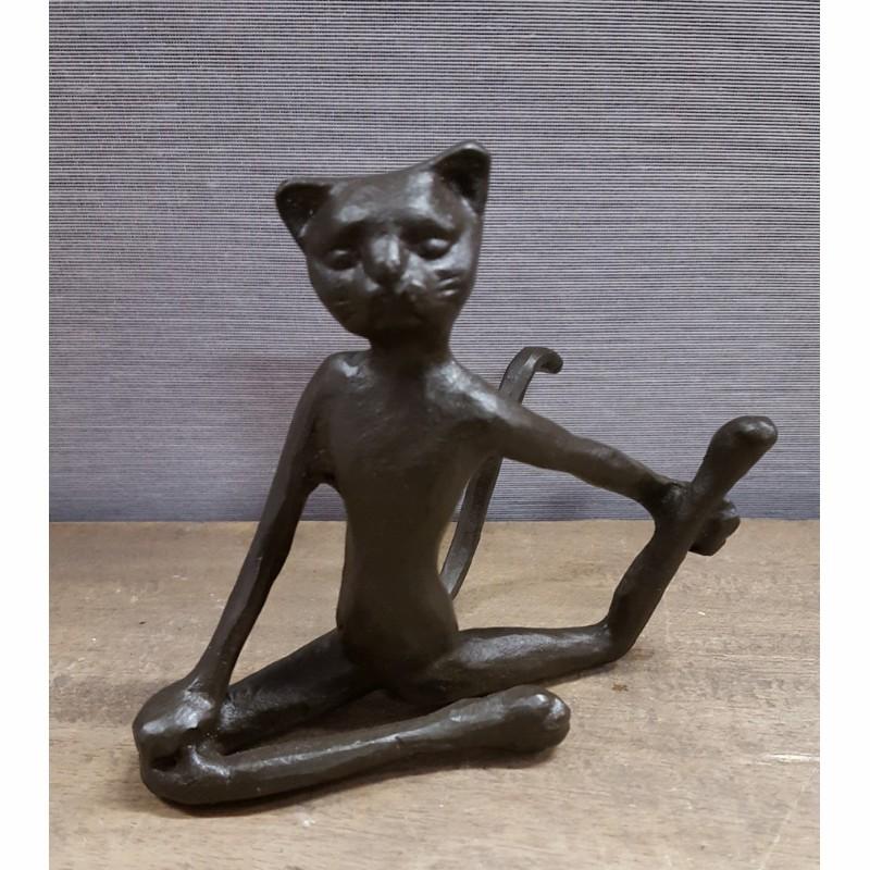 Katt yoga