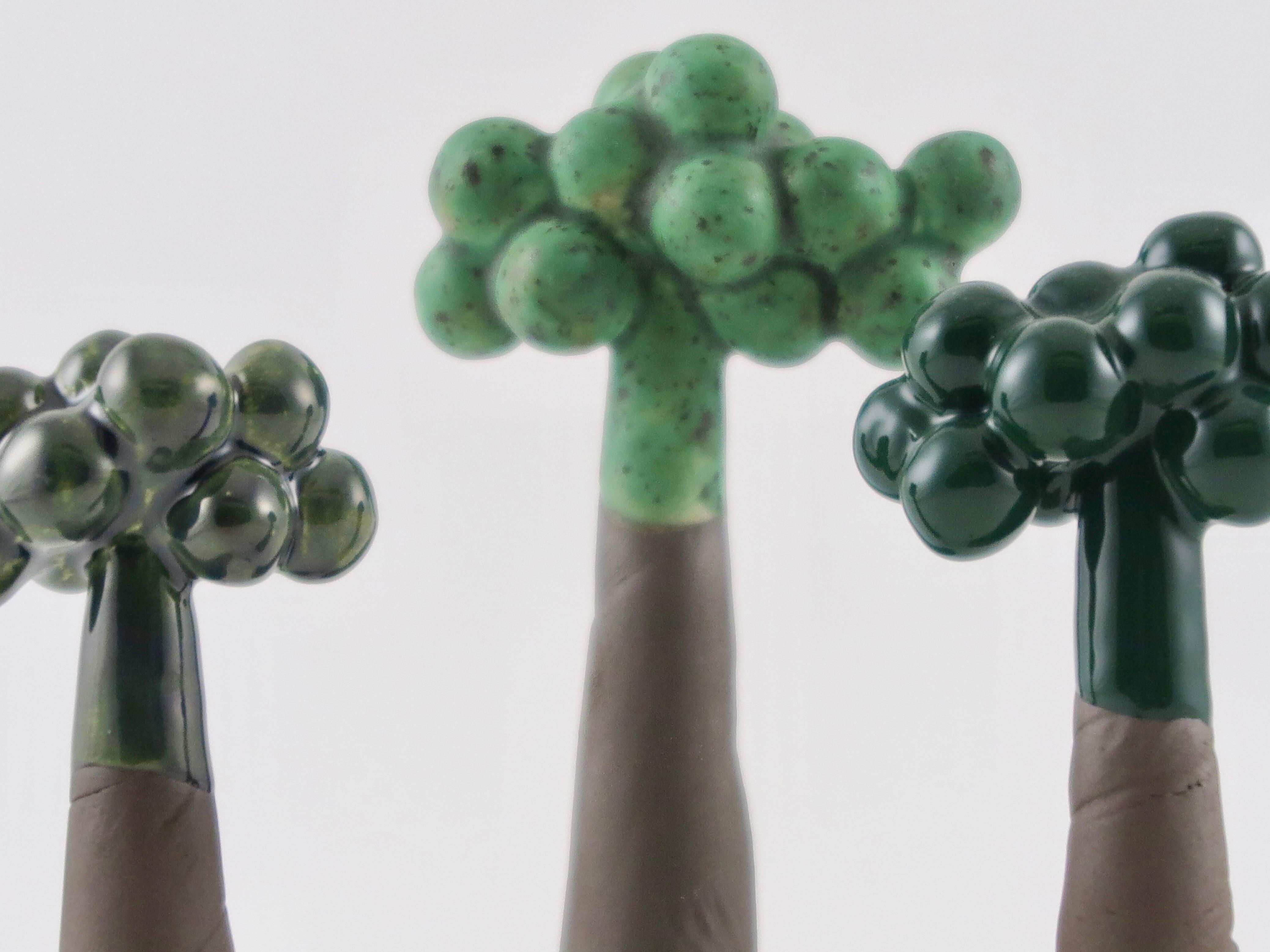 CARLAS CAOS - Små træer