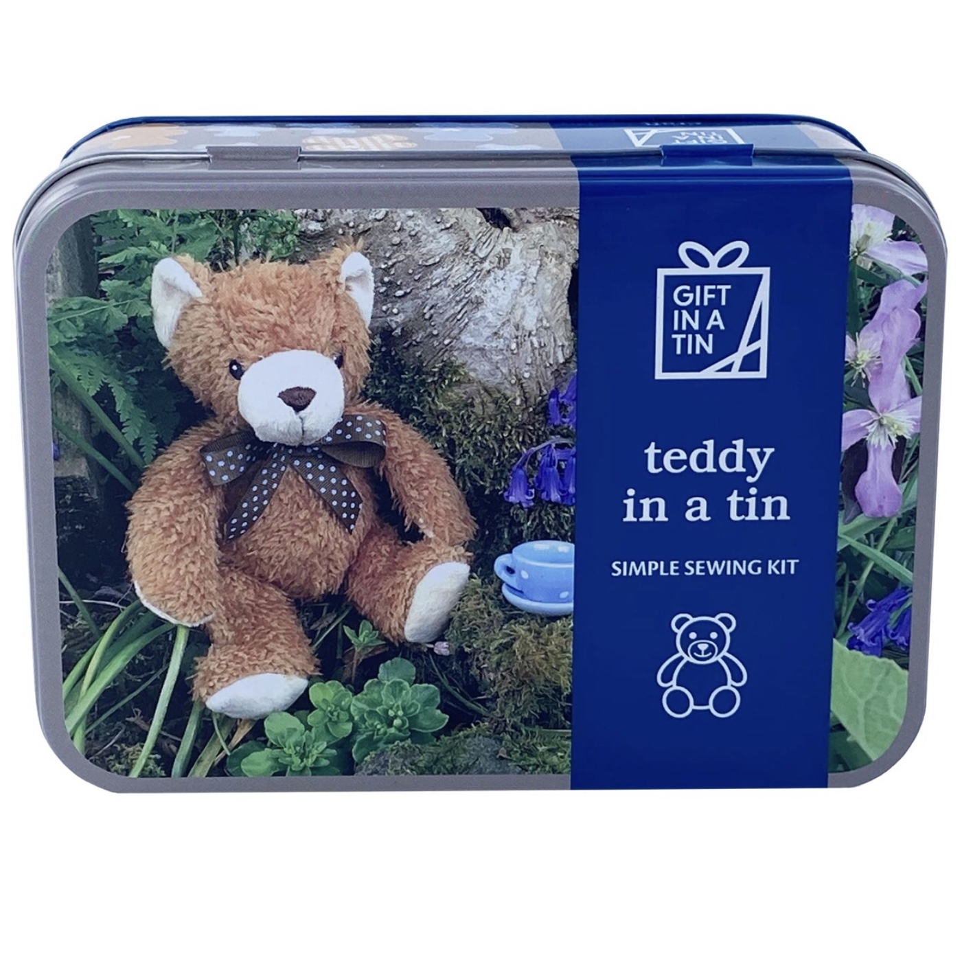 'Teddy' Gift In A Tin