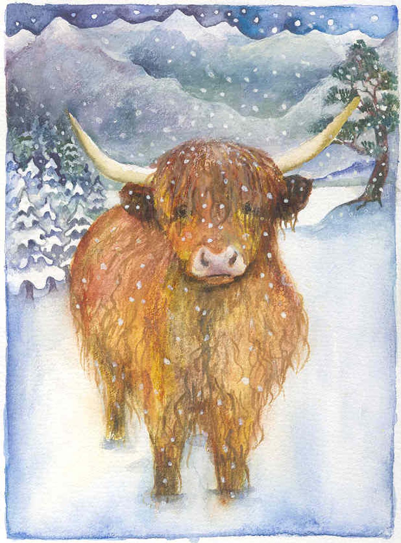 'Highland Cow' Furzedown Gallery Mini Card