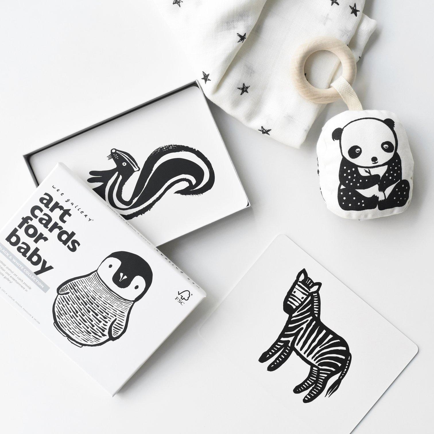 Wee Gallery - Geschenkbox Litte Naturalist Black & White