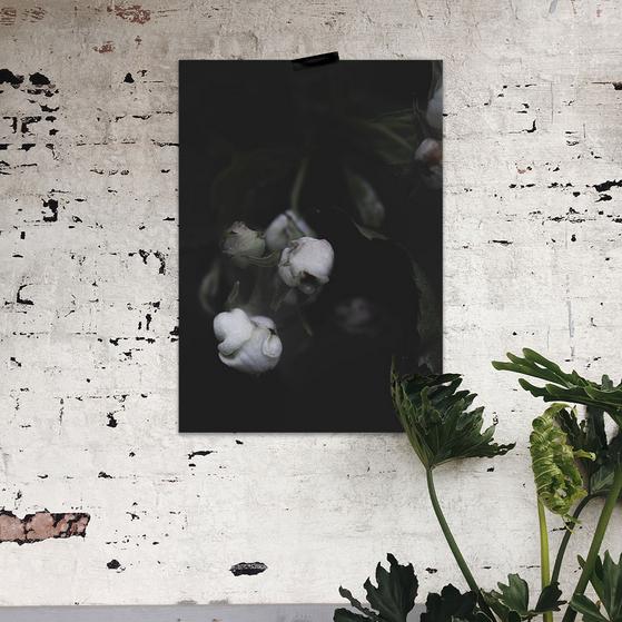Ainoa Graphic Design: Kaiho-juliste