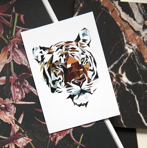 Ainoa Graphic Design: Tiger-postikortti