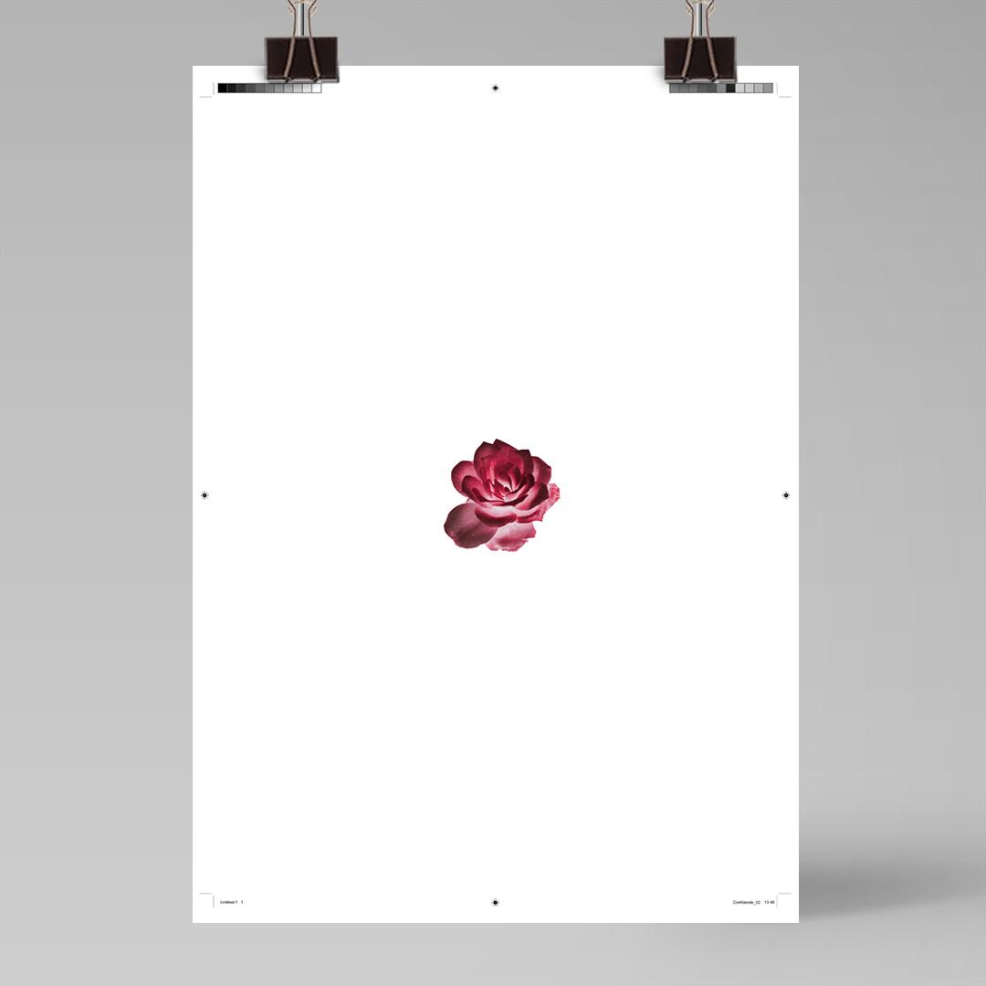 Ainoa Graphic Design: Confidence-juliste