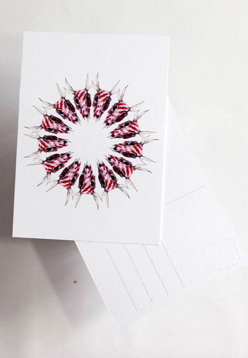 Ainoa Graphic Design: Raitakallokranssi-kortti