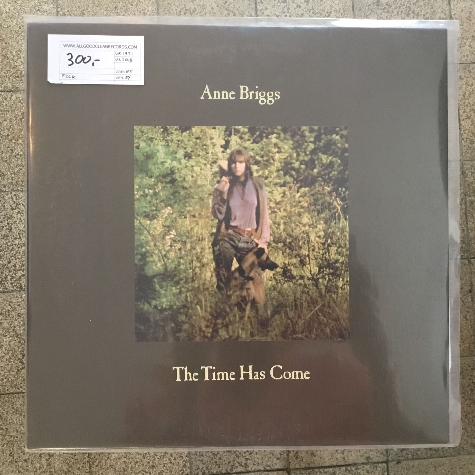 Anne Briggs – The Time Has Come [LP] (2. hand)