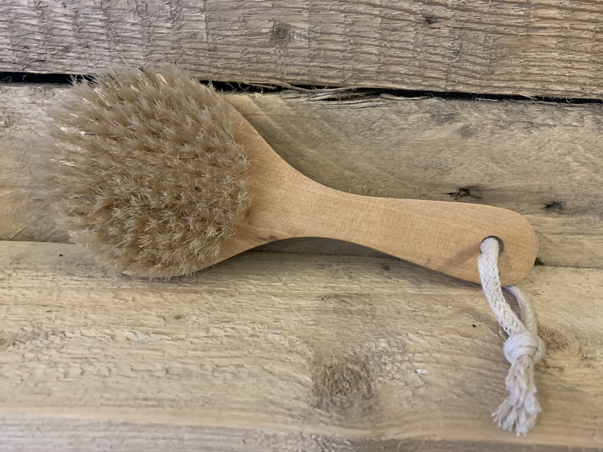 Short Handle Body Brush