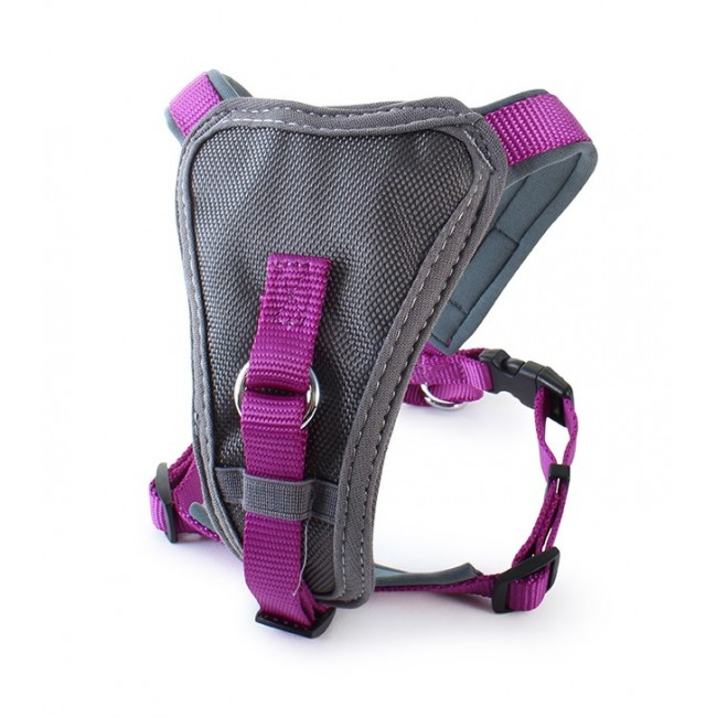 Doodlebone X over Harness Purple