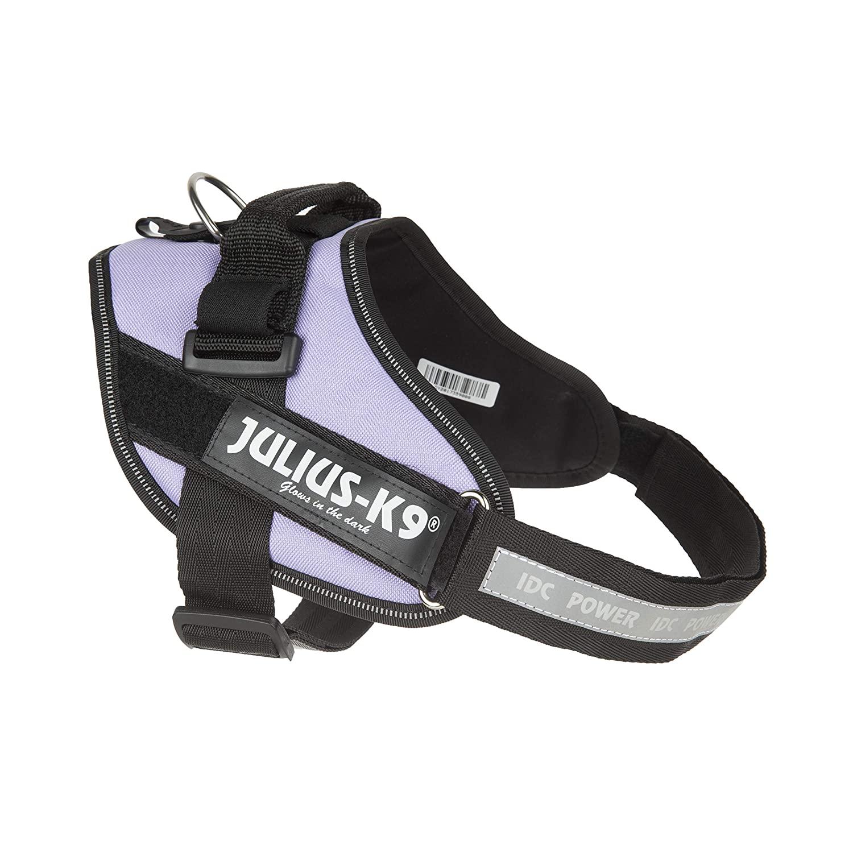 K9 Julius Harness Purple