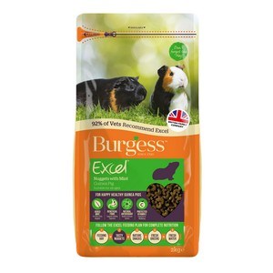 Burgess Excel Guinea Pig with Mint 2kg
