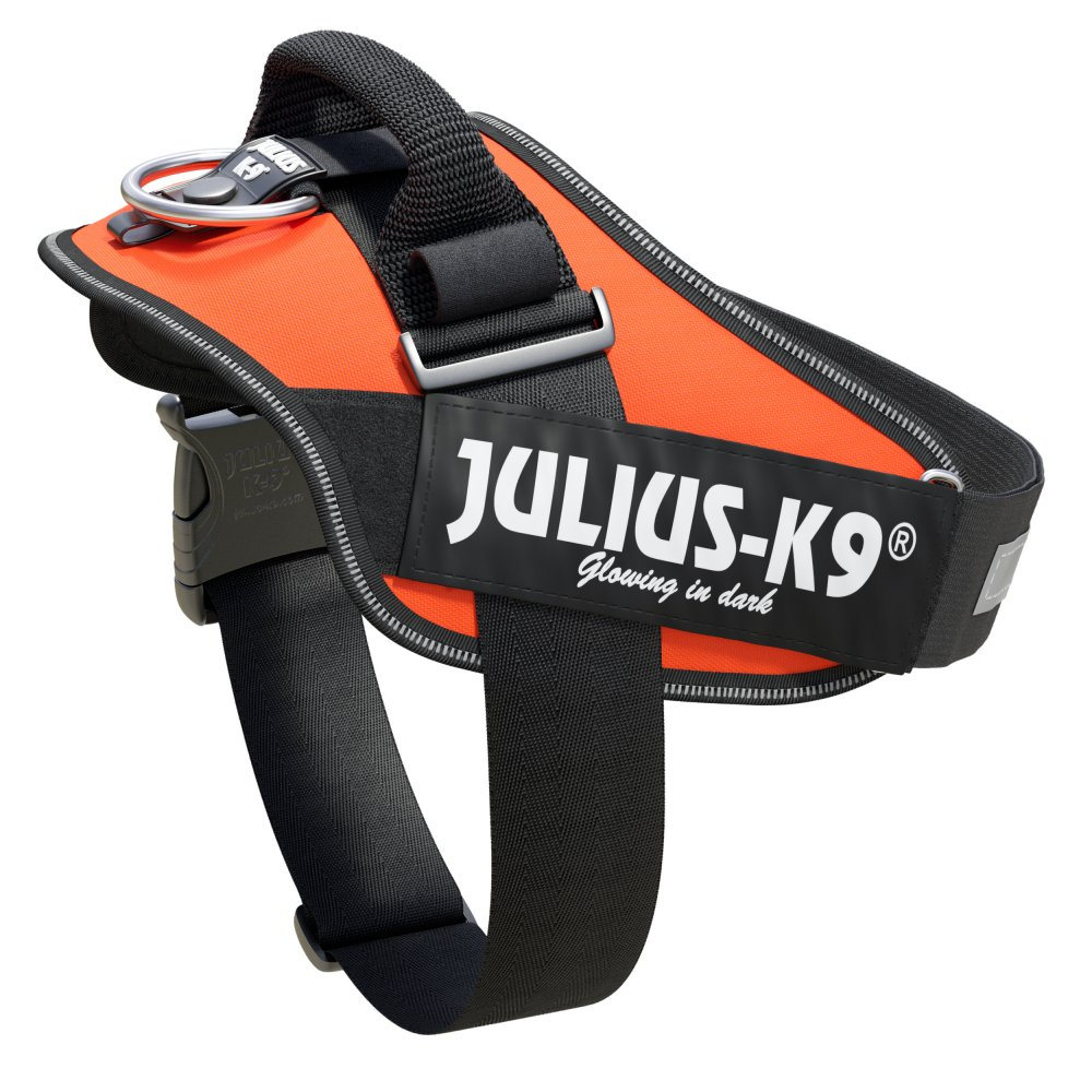 Julius K9 Orange