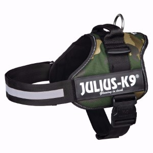 Julius-K9 Camo Mini